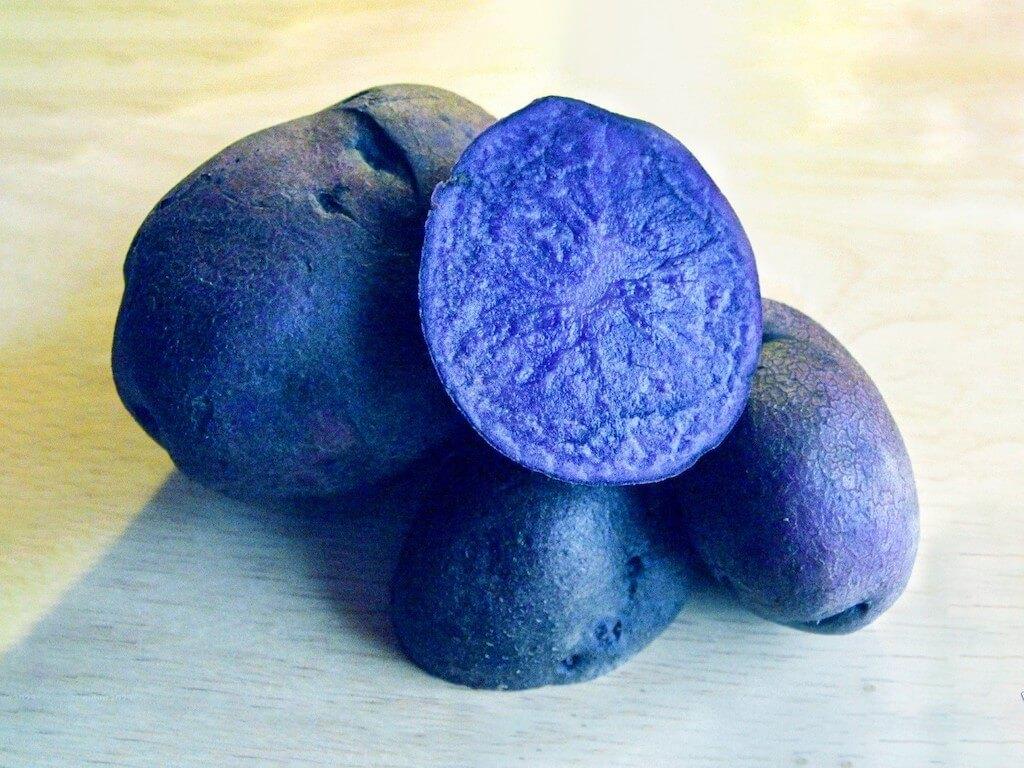дело картофель синие сорта описание фото отзывы имеет